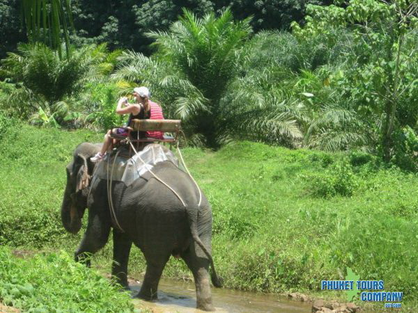 Arrive at Elephant camp for an exciting Elephant trekking. Elephant riding  into the tropical rainforest is a fun and exciting experience.